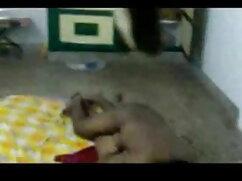 সুন্দরী বালিকা পোঁদ সেক্স খেলনা ঘোড়ার সাথে সেক্স ভিডিও